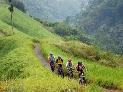 تور دوچرخه سواری بالی