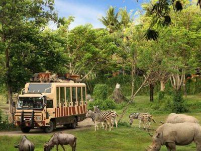 پارک حیوانات بالی